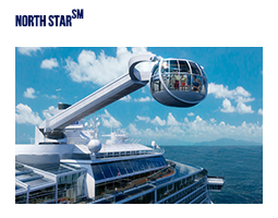 QUANTUM OF THE SEAS: ПЛАТА ЗА NORTH STAR И RIPCORD BY IFLY